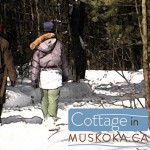Winter walk Muskoka cottage road