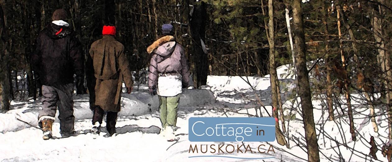 cottageinmuskoka.ca