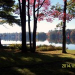 Muskoka cottage view